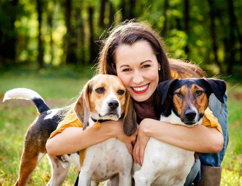 Consejos para el cuidado de nuestros animales de compañía