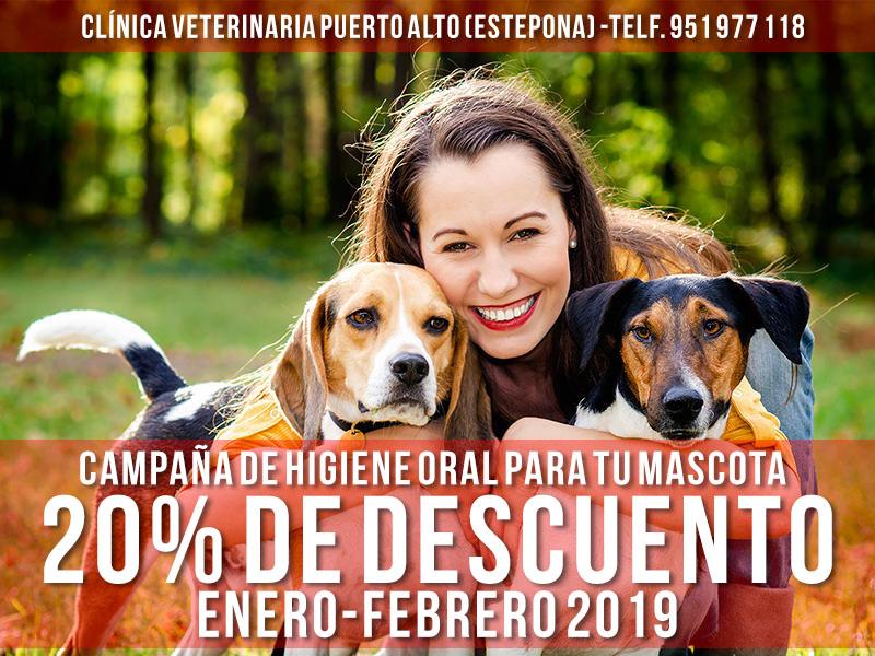 Campaña de higiene oral - Clínica Veterinaria Puerto Alto (Estepona)