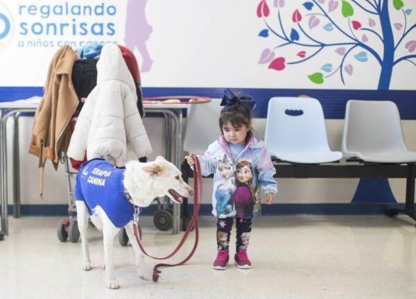 Terapia con perros para ayudar a nños ingresados en el Hospital de Granada