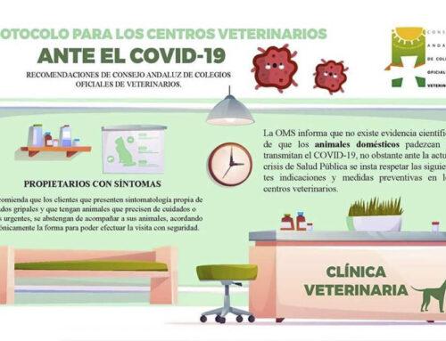 Protocolo veterinario ante el COVID-19