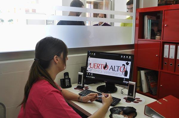 Puerto Alto - Atención al cliente