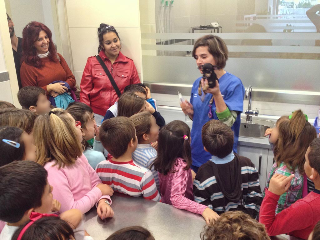 Visita Colegio Víctor de la Serna, 2B, 14-12-2012