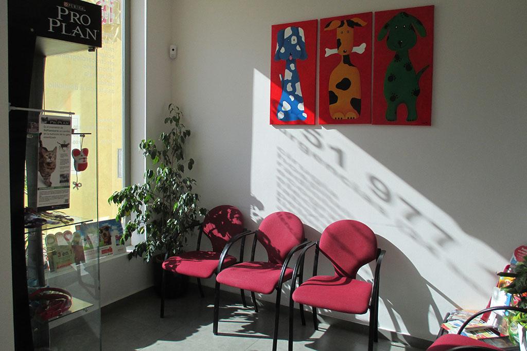 Sala de espera - Clínica Veterinaria Puerto Alto (Estepona)